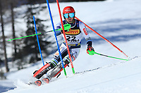 21st February 2021; Cortina d'Ampezzo, Italy; FIS Alpine World Ski Championships 2021 Cortina Men's Slalom;  Stefan Hadalin (SLO) finished joint 7th in event