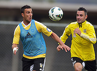 130117 A-League Football - Wellington Phoenix Training