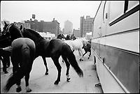 Circus. 1976