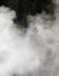 A man walks through smoke towards the woods.