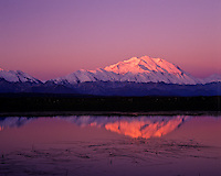 Mount McKinley from small tundra pond, Denali National Park, Alaska.