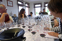 Wine tasting. Wine glasses. Alpha Estate Winery, Amyndeon, Macedonia, Greece