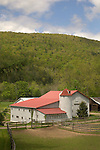Montvale Farm barn, Route 87, Forksville, PA in spring