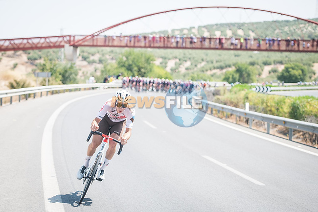 Stan Dewulf (BEL) AG2R-Citroën Team tries to breakaway during Stage 12 of La Vuelta d'Espana 2021, running 175km from Jaén to Córdoba, Spain. 26th August 2021. <br /> Picture: Unipublic/Charly Lopez | Cyclefile<br /> <br /> All photos usage must carry mandatory copyright credit (© Cyclefile | Charly Lopez/Unipublic)