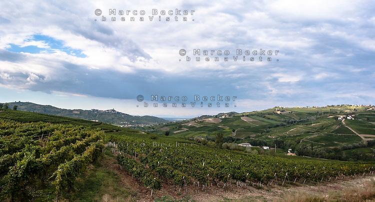 Vigneti presso Lirio (Pavia), nell'Oltrepò Pavese del nord --- Vineyards near Lirio (Pavia), in the northern Oltrepò Pavese