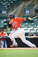Baltimore Orioles catcher Daniel Fajardo (14) during an Instructional League game against the Tampa Bay Rays on September 19, 2016 at Ed Smith Stadium in Sarasota, Florida.  (Mike Janes/Four Seam Images)