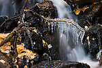 water, waterfall, stream, ice, nature, abstract, aspen leaves, fall, autumn, color, Horseshoe Park, Rocky Mountain National Park, Colorado, Rocky Mountains, USA