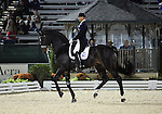 Steffen Peters and Ravel of the USA perform their Freestyle Dressage in the Grand Prix Freestyle Dressage competition at the Alltech World Equestrian Games in Lexington, Kentucky.