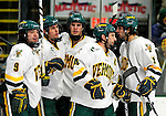 30 January 2010: Members of the University of Vermont Catamounts celebrate scoring a goal against the University of Maine Black Bears at Gutterson Fieldhouse in Burlington, Vermont. The Maine Black Bears and the Catamounts played to a 4-4 tie in the second game of their America East weekend series. Mandatory Credit: Ed Wolfstein Photo