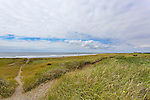 Twin Harbors State Park Beach, near Westpprt, Washington is laced with trails through the dunes.