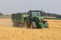22-7-2021 Harvesting Winter Barley <br /> ©Tim Scrivener Photographer 07850 303986<br />      ....Covering Agriculture In The UK....