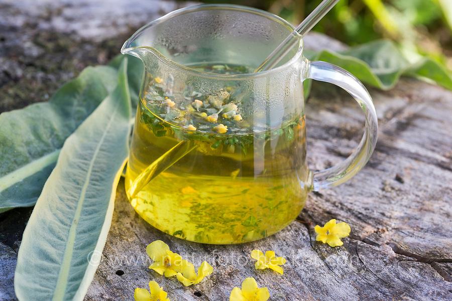 Königskerzen-Tee, Tee, Kräutertee, Heiltee aus Königskerzen-Blüten und Blättern, Blütentee, Königskerze, Verbascum spec., mullein, tea, herbal tea, herb tea, lychnite
