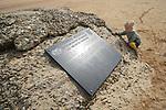 """Foto: VidiPhoto<br /> <br /> COLLEVILLE-SUR-MER – Ze maakt zich druk om een dode krab op de plek waar 2000 Amerikaanse soldaten sneuvelden. Zo zijn kleuters, ook de vierjarige Frieda uit Hückeswagen bij Keulen in Duitsland. Samen met haar moeder, opa en oma bezoekt ze deze week Omaha Beach, het Normandische strand waar de invasie van de geallieerden op 6 juni 1944 zo maar mis had kunnen gaan. Landgenoten van Frieda, 7800 Duitse soldaten, zorgden voor een ware slachting onder de Amerikanen. Terwijl opa Klaus (71) en oma Gabriele Böcher (69) zich op deze plek zichtbaar ongemakkelijk voelen, klautert hun kleindochter op de steen waar de eerste Amerikaanse gewonden werden behandeld. De plek ook waar velen alsnog stierven. Bijna 75 later herinnert alleen een plaquette nog aan dat vreselijke moment. Voor Klaus en Gabriele is het Nazitijdperk onlosmakelijk verbonden met de geschiedenis van hun land en familie. Böchers' vader diende bij de Kriegsmarine en de papa van Gabriele vocht aan het Oostfront. Daarom durven ze pas na 75 jaar de invasiestranden te bezoeken ook al zijn hun kinderen opgevoed met de Europese gedachte. Want: """"Nie wieder Krieg."""" En Frieda? Die begrijpt er nog weinig van. Voor haar is de dode krab al een drama."""
