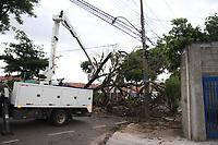 CAMPINAS, SP, 31.10.2018: ARVORE-SP - Uma árvore caiu na avenida Antonio Carvalho de Miranda no Jardim Aurocam, após vento e chuva atingir a cidade de Campinas, interior de São Paulo, no final da tarde desta quarta-feira (31). A CPFL atendeu a ocorrencia que atingiu parte da fiação elétrica e deixou a região sem energia. (Foto: Luciano Claudino/Código19)