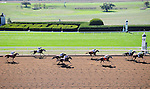 LEXINGTON, KY - OCTOBER 07:  Opening day at Keeneland on October 7, 2016 in Lexington, Kentucky. (Photo by Jessica Morgan/Eclipse Sportswire/Getty Images)