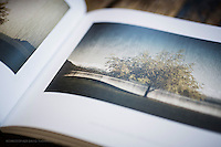 Please click on 'Art of the Landscape Books' menu tab at the top of the page above to purchase this book from the Blurb website.<br /> <br /> This gorgeous 120 page hard-cover photographic book represents a cross-section of Christopher Thompson's favourite images of his hometown, ranging from the classically pictorial to the beautifully minimalist abstract works he is well known for. It is a wonderful collection of his artistic photography – showcasing the stunning landscapes of Wanaka, Central Otago, New Zealand.<br /> <br /> Christopher David Thompson is both a professional Graphic Designer (Director of the Hook Design Studio), Photographer and Proprietor of The Picture Lounge - New Zealand Photographers Gallery, based in Wanaka, New Zealand. <br /> <br /> This is a big and beautiful book! 11 x 13 inches (279 x 330mm). Printed on an Indigo press using only the finest quality Mohawk eggshell-textured 148gsm uncoated paper stock, the printing showcases the work so beautifully, making this an inspiring and artistic photographic manuscript, reflecting the true qualities of Christopher's design-led photographic work. Designed by the artist, the page layout varies from plates to full page spreads, and often shows off the changing of seasons that the Wanaka region is renowned for. A gorgeous art book for anyone interested in the region or in landscape photography in general.<br /> <br /> The books can also be ordered directly through the blurb website www.blurb.com