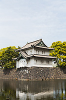 A moat surrounds the Imperial Palace in Tokyo.