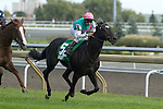 Thoroughbred Racing 2010 - Northern Dancer Turf
