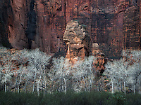 The two pillars of Mt Sinowava in Zion National Park are outlines by the sun.