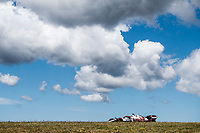 07 RAIKKONEN Kimi (fin), Alfa Romeo Racing ORLEN C41, action during the Formula 1 Heineken Grande Prémio de Portugal 2021 from April 30 to May 2, 2021 on the Algarve International Circuit, in Portimao, Portugal  <br /> FORMULA 1 : Grand Prix Portugal - Essais - Portimao - 30/04/2021<br /> Photo DPPI/Panoramic/Insidefoto <br /> ITALY ONLY
