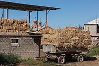 Armenia. Ararat Province. Byuravan. Armenian Apostolic Church. Saint Gregory the Illuminator church. Bales of hay stacked in a cart. The Armenian Apostolic Church is the national church of the Armenian people. Part of Oriental Orthodoxy, it is one of the most ancient Christian communities. Byuravan is a village located in the Ararat Province. 1.10.2019 © 2019 Didier Ruef