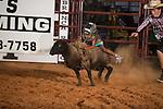 SEBRA - Chesterfield, VA - 8.29.2014 - Mutton Bustin'
