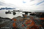 Roches couvertes de lichens au pied du Mont Hornsund au sud ouest du Spitzberg..Rocs and lichens at the bottom of Mont Hornsund. South west coasdt of Spitzberg