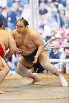 Aminishiki, <br /> APRIL 17, 2017 - Sumo : Annual sumo tournament dedicated to the Yasukuni Shrine in Tokyo Japan. (Photo by Yohei Osada/AFLO SPORT)