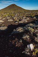 e de la Réunion, Parc national de La Réunion, classé Patrimoine Mondial de l'UNESCO,   volcan du Piton de la Fournaise, vue sur le Piton Lacroix //   France, Reunion island (French overseas department), Parc National de La Reunion (Reunion National Park), listed as World Heritage by UNESCO, Piton de la Fournaise volcano, view of the Piton Lacroix