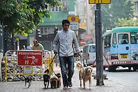 CHINA, Megacity Hong Kong, Kowloon, pedestrian with five dogs