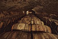 Europe/France/Aquitaine/33/Gironde/Saint-Estèphe: Chateau Phélan Ségur (AOC Saint-Estèphe) - La cave