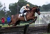 05/30/2021 - Winterthur Races