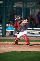 Gregory Wozniak (12) of Forsyth Central High School in Cumming, Georgia during the Under Armour All-American Pre-Season Tournament presented by Baseball Factory on January 14, 2017 at Sloan Park in Mesa, Arizona.  (Mike Janes/MJP/Four Seam Images)