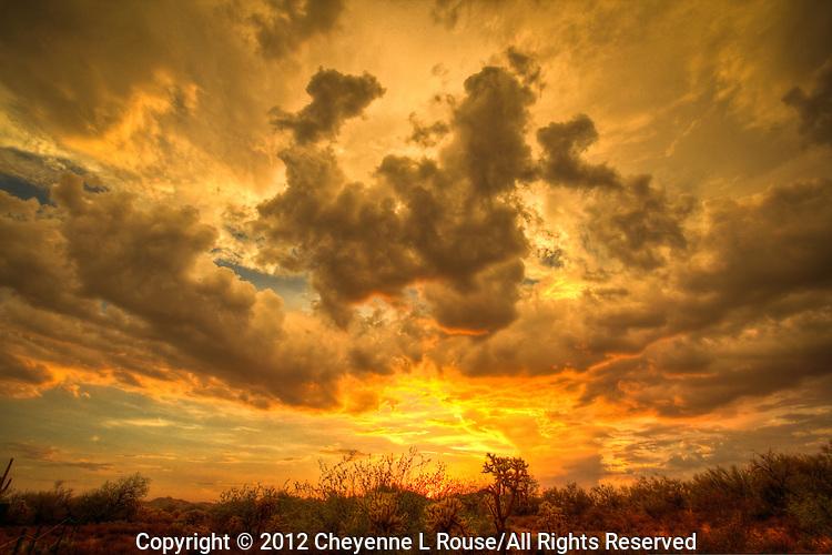 Riding off into the Arizona Sunset