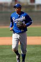 Mario Lisson  - Kansas City Royals - 2009 spring training.Photo by:  Bill Mitchell/Four Seam Images