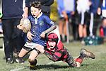 Nelson Rugby Club v ChCh Football Club
