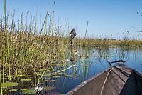 Africa, Botswana, Okavango Delta, Khwai Private Reserve. On a Mokoro canoe on the river.