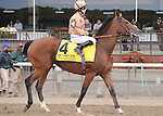 I'm A Dreamer (IRE), ridden by Hayley Turner, runs in the Flower Bowl Invitational Stakes (GI) at Belmont Park in Elmont, New York on September 29, 2012.  (Bob Mayberger/Eclipse Sportswire)