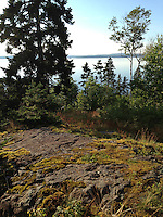 From the Lookout, Witherle Woods, Castine, Maine, US