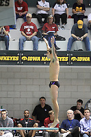 The Northwestern University Men's Swim and Dive team compete in the 2012 Big Ten Swimming and Diving Championships, Iowa City, Iowa. February 22nd - 25th, 2012