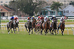 January 16, 2016: Scenes from the Marie G. Krantz Memorial Stakes race at the Fairground race course in New Orleans Louisiana. Steve Dalmado/ESW/CSM