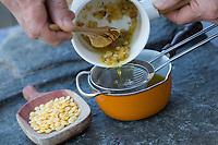 Harzsalbe selbermachen, Harz-Salbe selbermachen, selber machen, selber rühren: Zutaten: Fichtenharz, Olivenöl, Bienenwachs. Balsam, Harzsalbe, Harzcreme, Harzbalsam, Pechsalbe, Fichtenharz wird zusammen mit Olivenöl und Bienenwachs zu einer Heilsalbe, Heilcreme, Creme, Salbe verarbeitet. Schritt 3: Das Öl-Harz-Gemischt wird durch ein Sieb gegossen, um Verunreinigungen auszusieben. Fichten-Harz, Baumharz, Harz, liquid pitch, tree gum, galipot, gallipot. Gewöhnliche Fichte, Fichte, Rot-Fichte, Rotfichte, Picea abies, Spruce, Common Spruce, Norway spruce, L'Épicéa, Épicéa commun