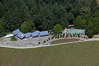 Aerial photograph Kistler Vineyards Sonoma Coast Pinot Noir vineyards