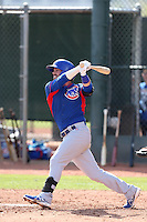 Stephen Bruno of the Chicago Cubs bats during a Minor League Spring Training Game against the Los Angeles Angels at the Los Angeles Angels Spring Training Complex on March 23, 2014 in Tempe, Arizona. (Larry Goren/Four Seam Images)