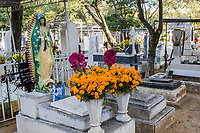 Oaxaca; Mexico; North America.  Day of the Dead Celebration.  Grave Decorated with Marigolds, the traditional flower used for this occasion.  San Miguel Cemetery.