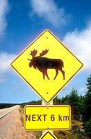 Moose crossing sign<br />