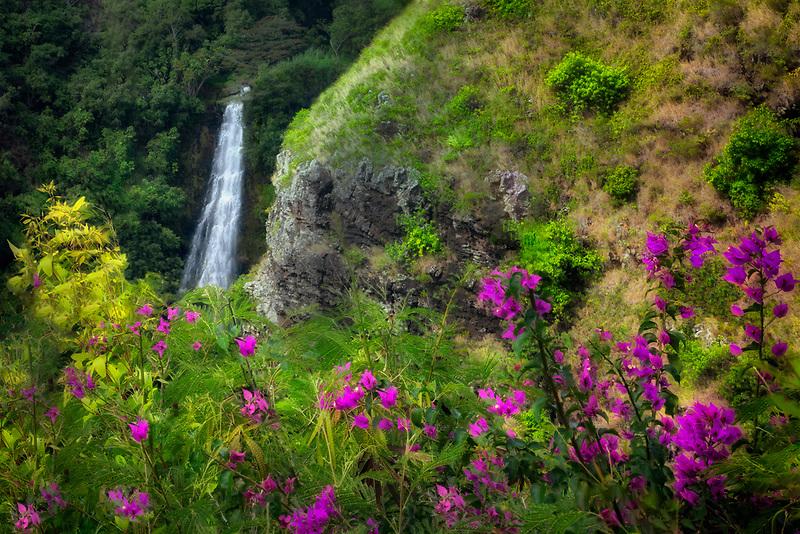 Opaekaa Falls with Bougainvillea flowers. Kauai, Hawaii