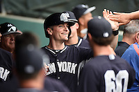 New York Yankees infielder Brendan Ryan (17) during a Spring Training game against the Philadelphia Phillies on March 27, 2015 at Bright House Field in Clearwater, Florida.  New York defeated Philadelphia 10-0.  (Mike Janes/Four Seam Images)