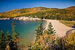 Autumn at Sand Beach, Acadia National Park, ME, USA