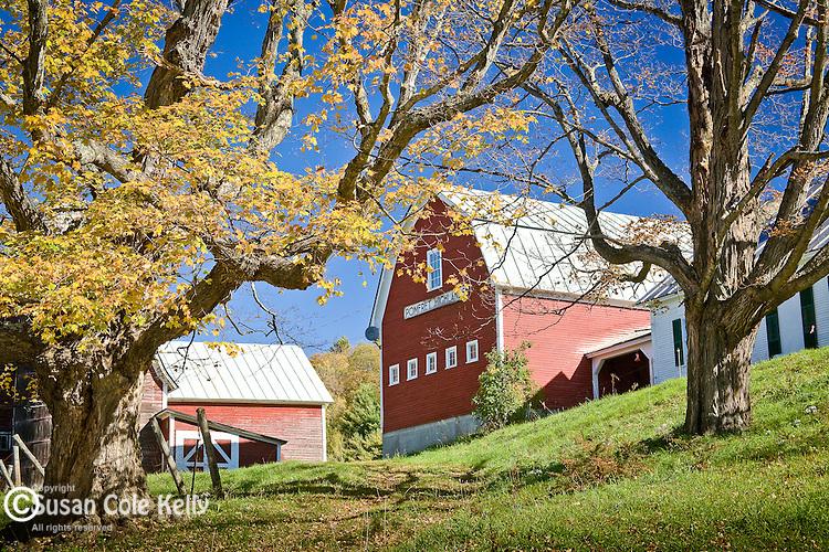 A red barn at the Pomfret Highlands farm in Pomfret, VT, USA